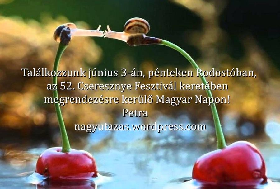 cerises,-escargots,-baiser-218286nnn